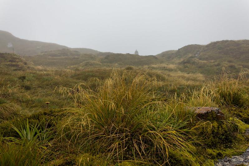 Towards Mackinnon Pass