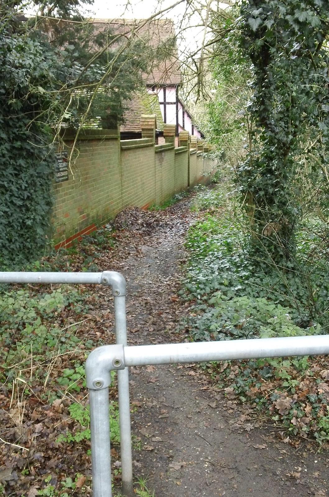 Last rustic view before Loughton suburbs