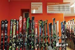 Harfa Sport - 100% půjčovna