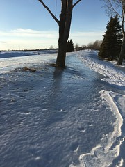 Beautiful day in the park 5: the ice