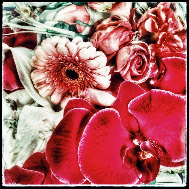 floral sculpture filtered in red