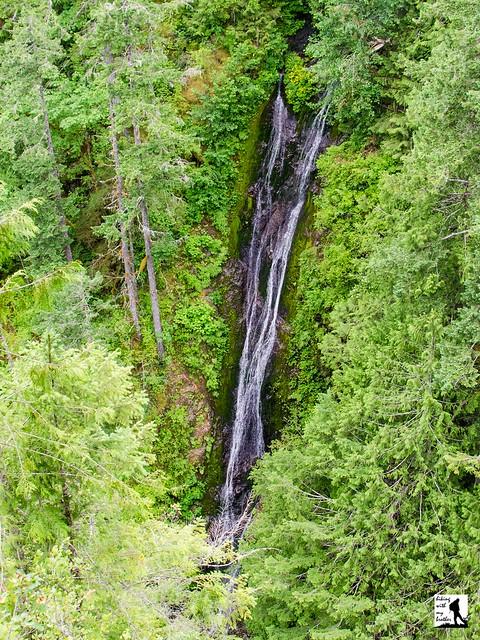 Falls View Falls