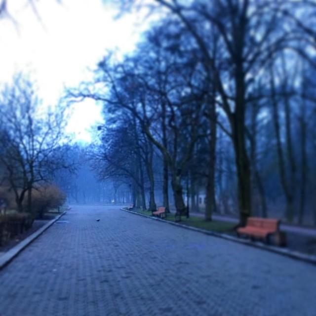 #spring #sunrise #украина #пейзаж #парк #львів #львов #україна #стрийськийпарк #lviv #lvivua #lviving #lvivcity #lvivgram #lvivingram #lemberg #leopolis #lvivblog #ualviv #travel #travelukraine #landscape