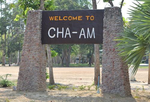 Cha-am Beach Forest