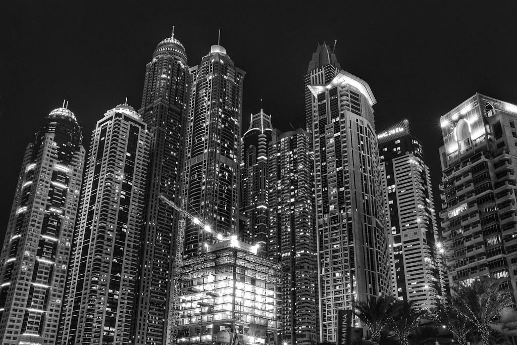Jungle of Dubai by Rededia Petrov, on Flickr