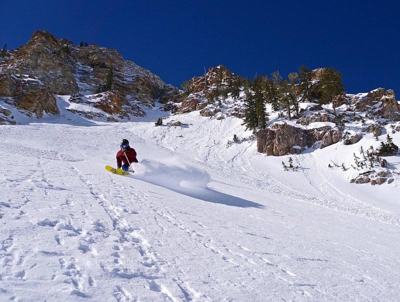 Alta skier