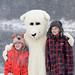 2016 Grand Valley Lion's Polar Dip