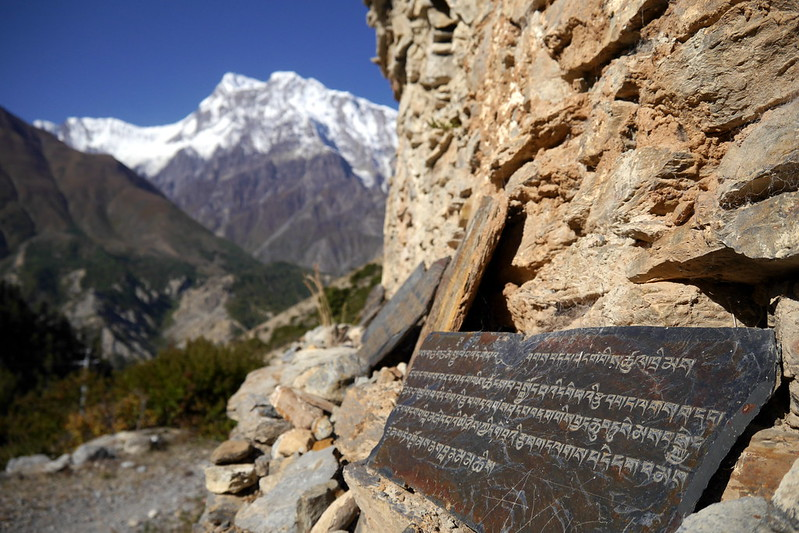 Monk Carvings