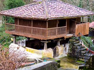 Camino Primitivo - 1 Oviedo-Grado (87)