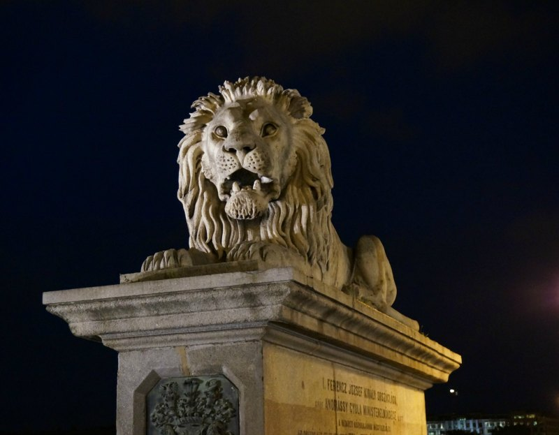 Chain Bridge Lion at Night