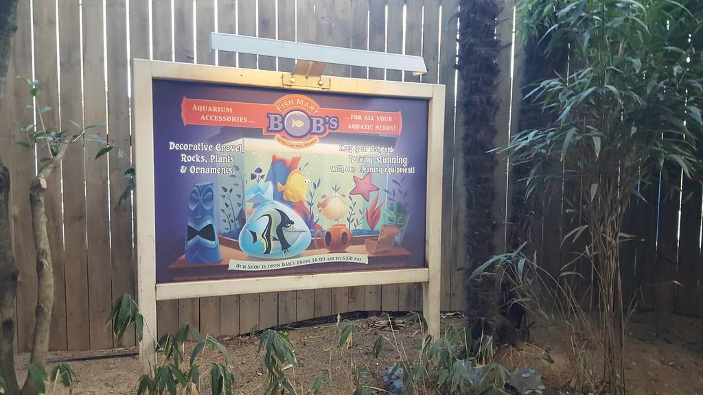 TR Sequoia Lodge en amoureux du 13 au 15 Janvier // Partie 6 : Troisième jour, Ratatouille, ENFIN ! - Page 2 24078424199_c70b66367e_b