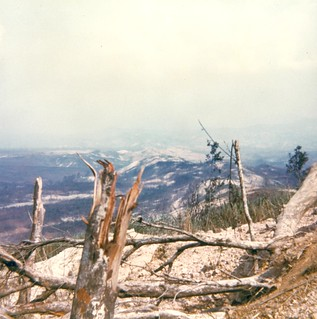 Operation Pegasus, Hill 689, 7 April 1968