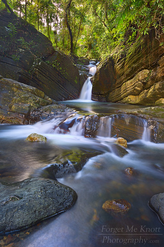 longexposure trees water pool creek forest river island waterfall rainforest rocks stream puertorico nationalforest tropical caribbean flowing elyunque cascade isla rushing elyunquerainforest brianknott forgetmeknottphotography fmkphoto