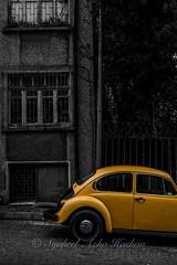 Yellow bug...