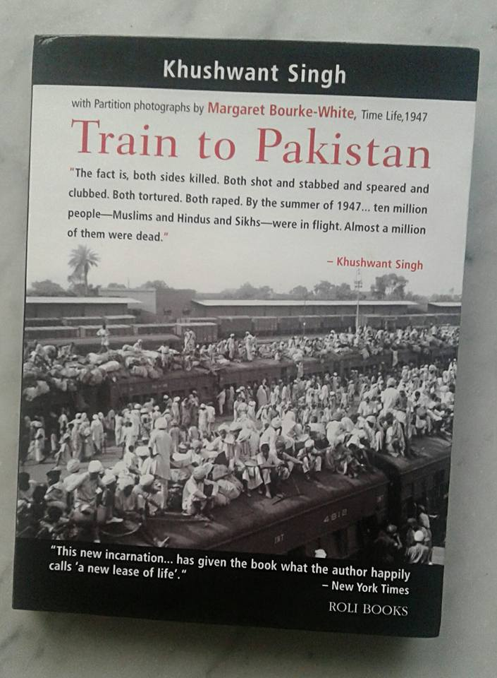 Train to Pakistan Summary & Study Guide