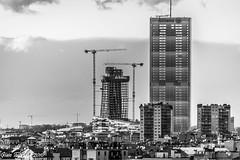 Milano Citylife: Lo Storto (piccoli grattacieli crescono)