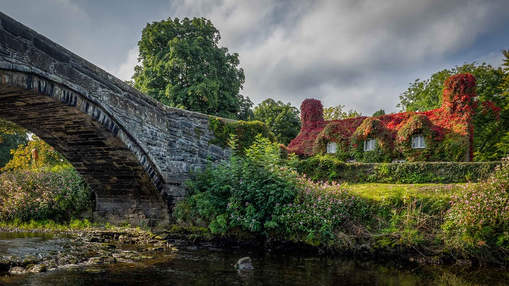 Cottage in Llanwrst by the side of the Afon Conwy - Photograph ny Mike Hardisty.jpg