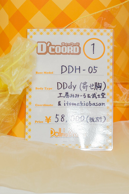 HTドルパ京都13 DDH-05
