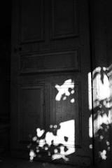 The door of the shadows