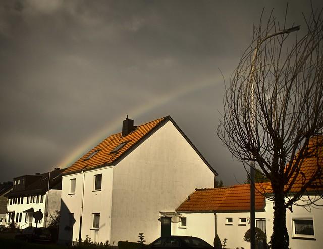 Regenbogen (Rainbow)
