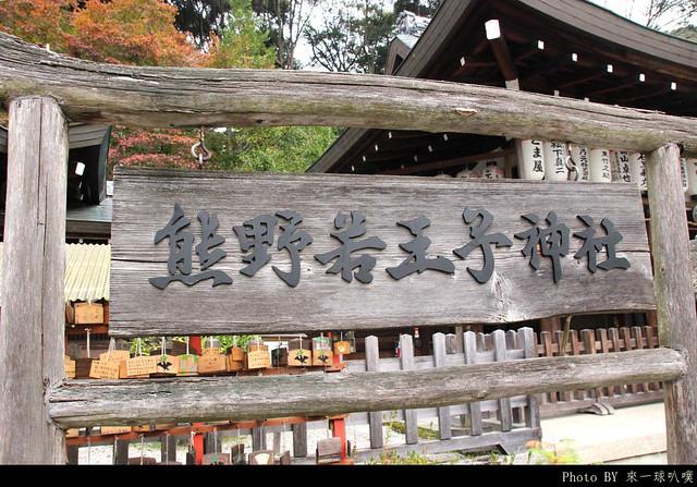 京都-哲學之道11