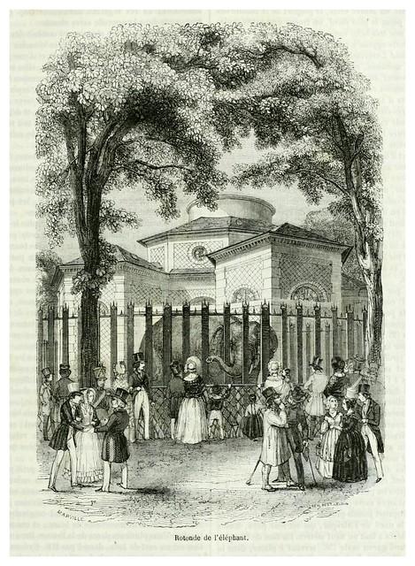 003-Rotonda del Elefante-Le jardin des plantes description et murs des mammifères de la Ménagerie..1863-  Boitard Pierre