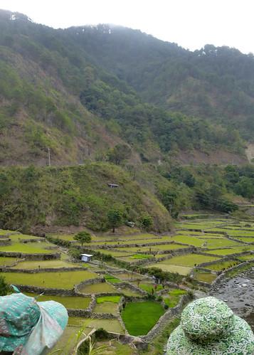 P16-Luzon-Bontoc-Banaue-route(16)