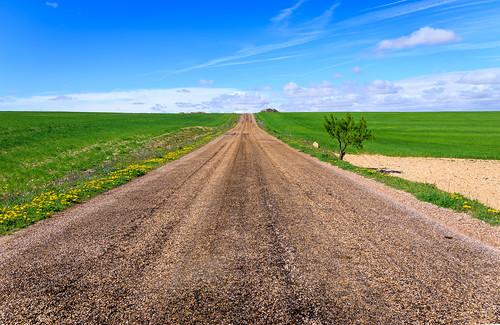 road green primavera grass canon countryside spring spain camino cuenca castilla 6d castillalamancha cebada varaderey 2470f4l