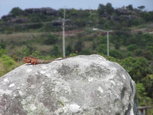 Parc National du Bokor