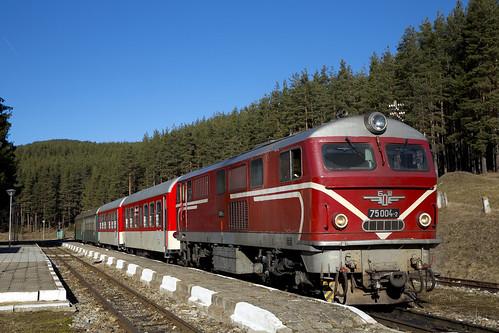 Narrow gauge train at Avramovo