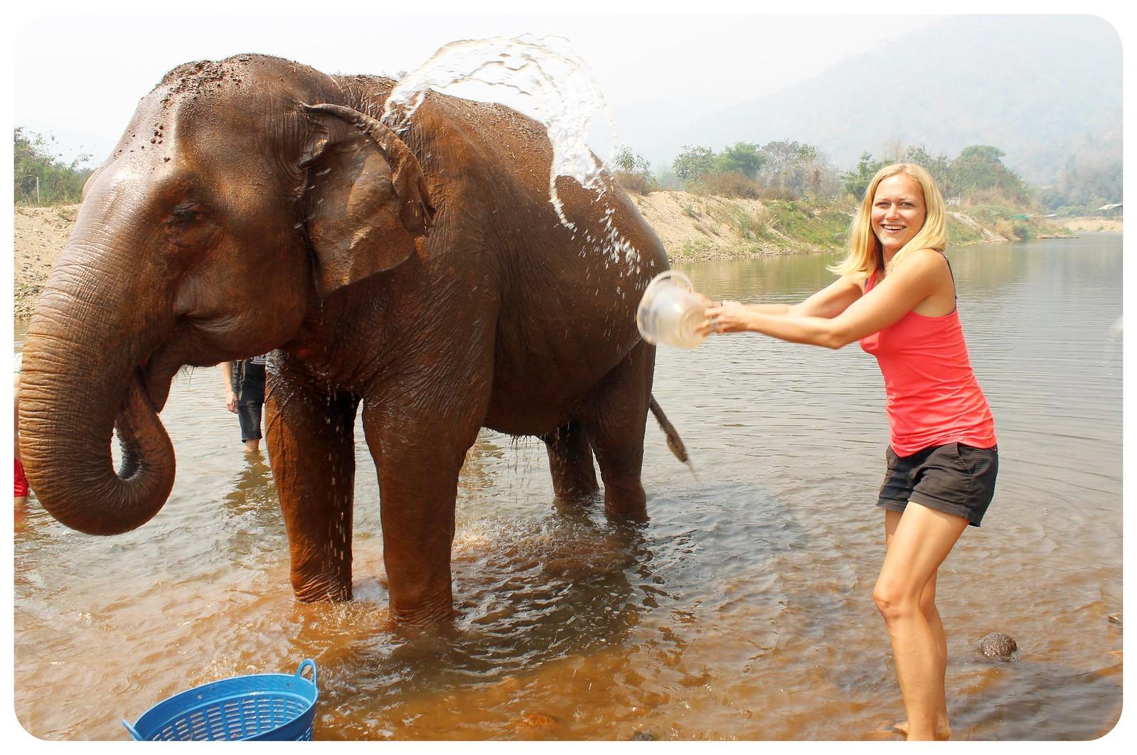 elepant nature park thailand dani