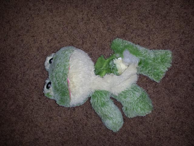 chewed_frog