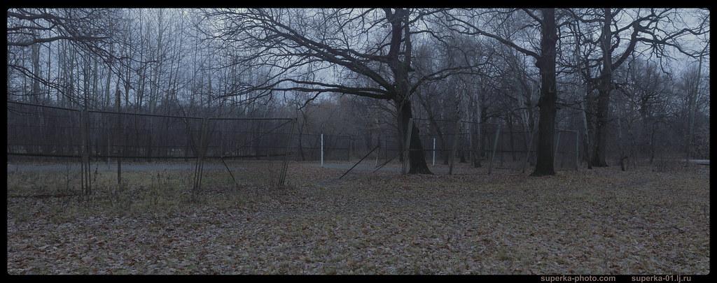 Park trees Pano 02_03_2K0000