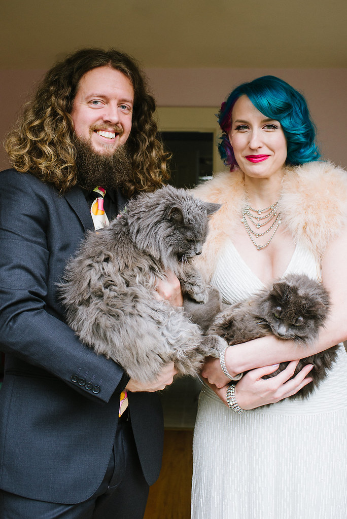 A cat wedding stylist: see how this kitty chose the wedding jewelry as seen on @offbeatbride #cats #wedding