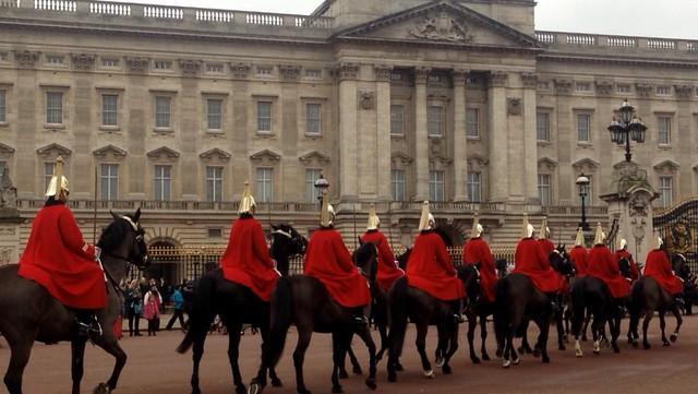 All the Queens Horses