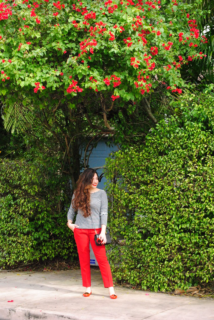 bougainvillea Valentine's Day outfit