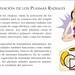 Siete Plasmas Radiales, Meditación de activación