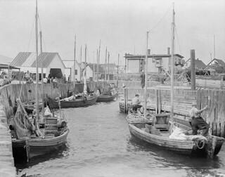 Fishing boats at Newport, Quebec / Bateaux de pêche à Newport, Québeca057020