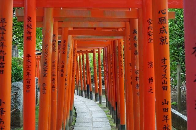 2016/04/09根津神社つつじ祭り-5