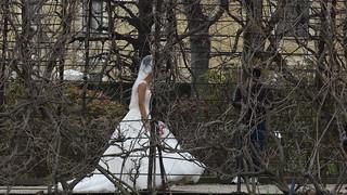 Schloss Schönbrunn beginnt die Hochzeitfeier in Wien 01823