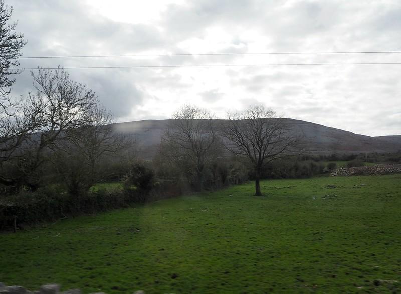 westirelandP4161259, länsi irlanti, luonto, vuori, vihreys, vehreys, nature, green,