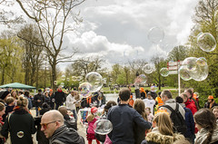 King's Day 2016