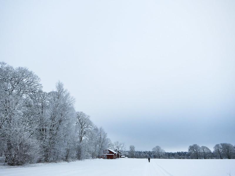 hallby skidor-3