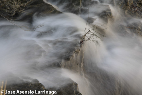 Parque Natural de Gorbeia  #DePaseoConLarri #Flickr -3101