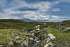 Loch Veiw