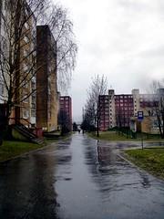 Image208