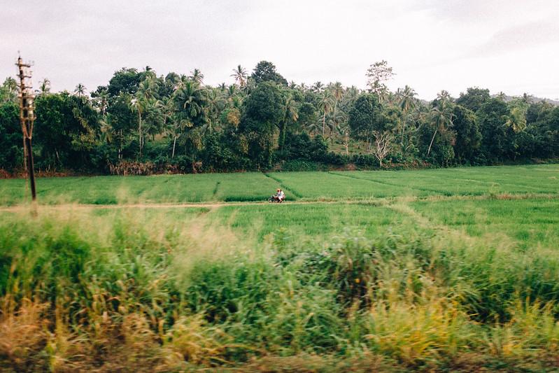 Kandy / Sri Lanka