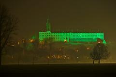 St. Patrick's Day Rudolstadt