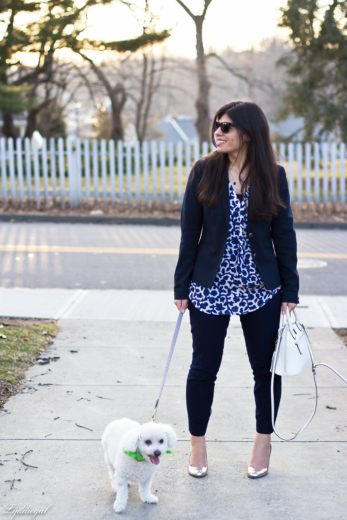 blue and white silk floral blouse, navy pants and blazer, dog-1.jpg