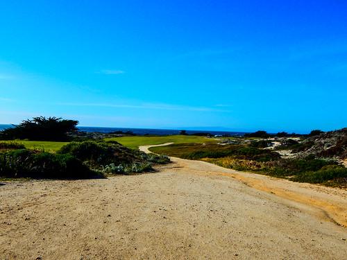 California - Pacific Grove
